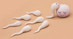 Alergie na spermie tabletky na zlepšení erekce